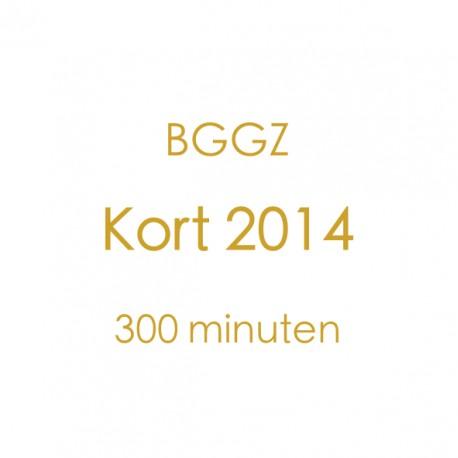 BGGZ Kort 2014