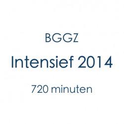 BGGZ Intensief 2014
