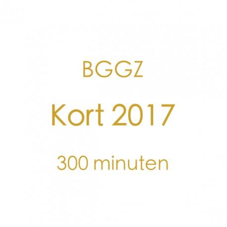 BGGZ Kort 2017