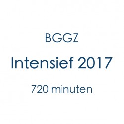 BGGZ Intensief 2017