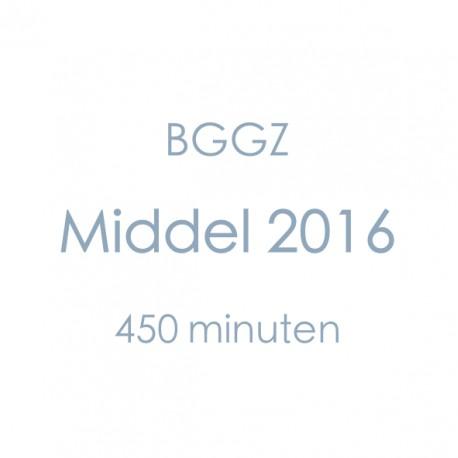 BGGZ Middel 2016