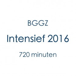 BGGZ Intensief 2016