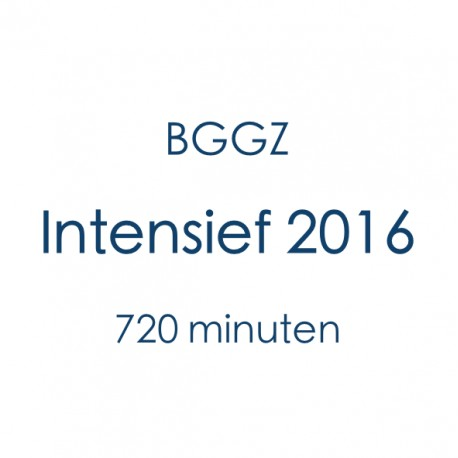 BGGZ Intensief
